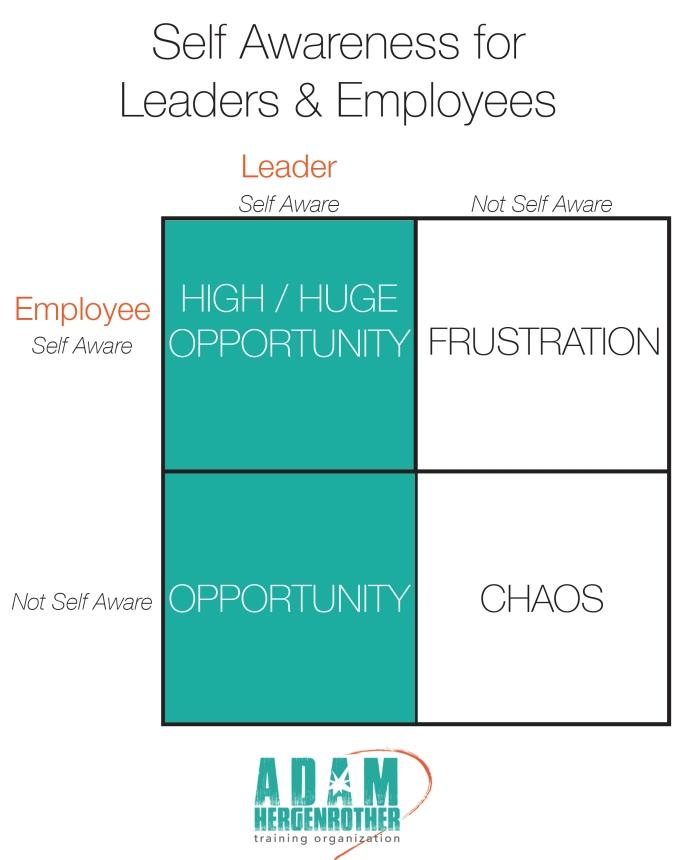 Self-Awareness Graphic